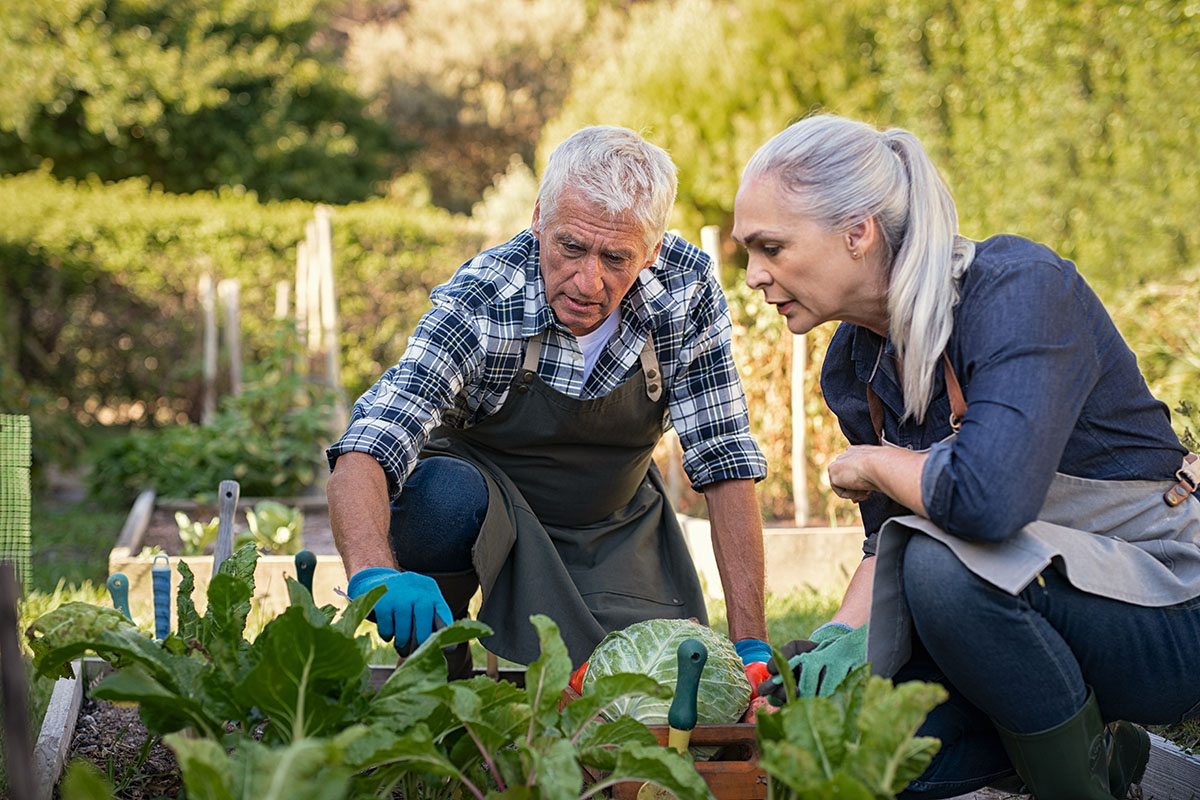 """Retirement and the """"Busy Ethic"""""""
